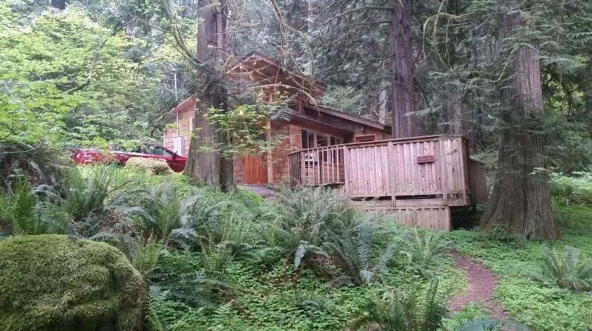 Cedar Grove Cabin, Deep Forest Cabins, Ashford, WA  [Image: Sarah Ruth Wilson]