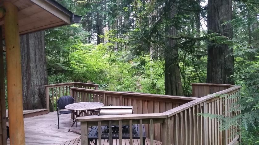 Cedar Grove deck [Image: Sarah Ruth Wilson]