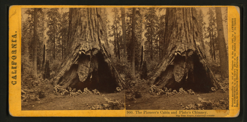 the_pioneers_cabin_and_plutos_chimney_big_tree_grove_calaveras_county_by_lawrence__houseworth